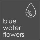 blue water flowers